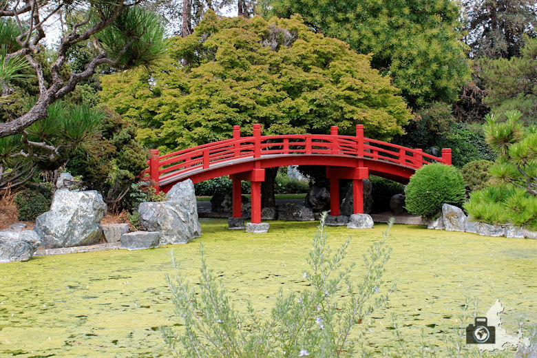 San José - Japanese Friendship Garden