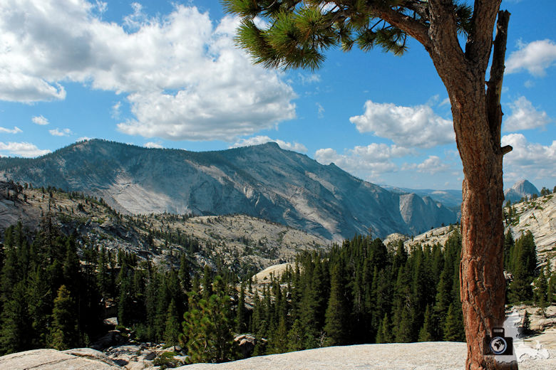 Yosemite - Tioga Road