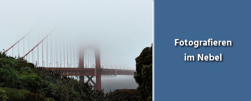 Fotografie Tipps - Fotografieren im Nebel