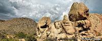 Joshua Tree Nationalpark - Wonderland of Rocks