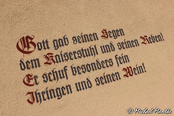 Ihringen_6