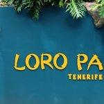 Teneriffa Tag 5 – Besuch im Loro Parque