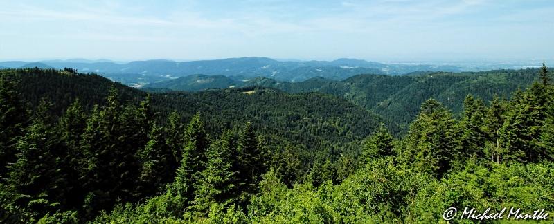 Nationalpark Schwarzwald – Wandern im wilden Wald