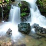 Die Todtnauer Wasserfälle – ein beeindruckendes Naturschauspiel!