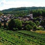 Achkarren und den Schlossbergpfad erleben