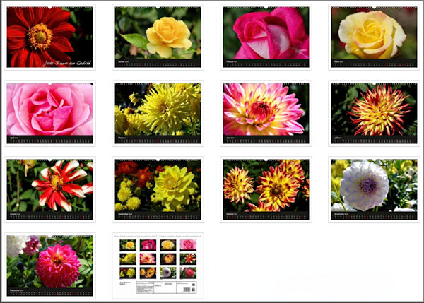 Blüten Kalender