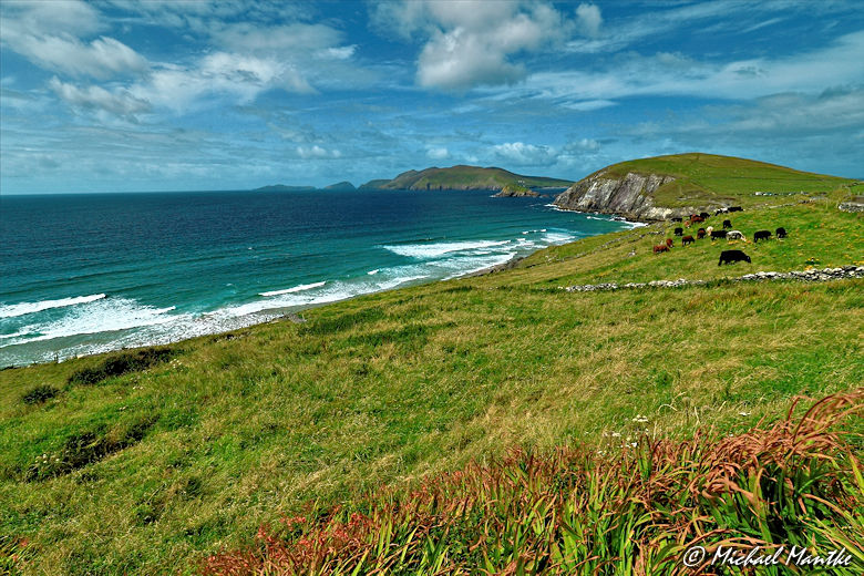 Irland Fazit