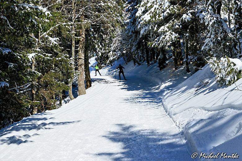 Winterwanderweg Feldberg