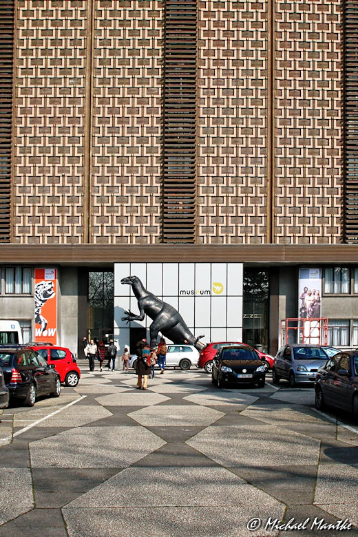 Brüssel Naturkundemuseum