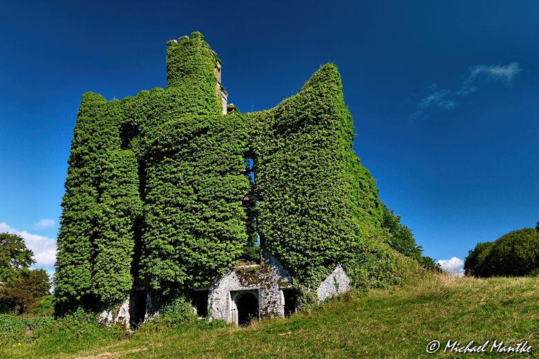 Irland Bilder Menlo Castle