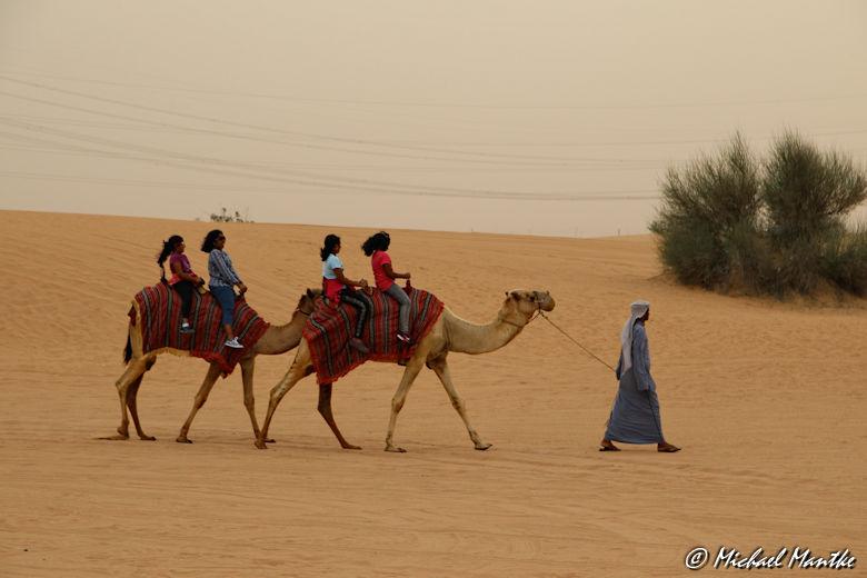 Dubai Wüstensafari Kamelreiten