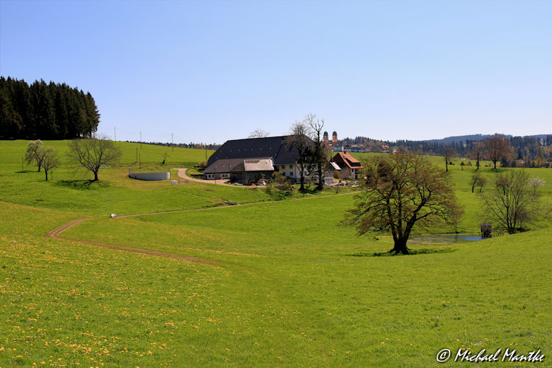 Hofgut im Südschwarzwald