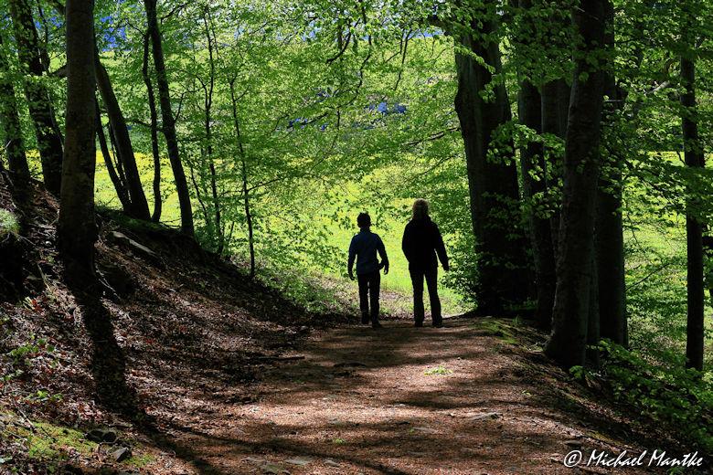 Wanderer zwischen St. Peter und St. Märgen
