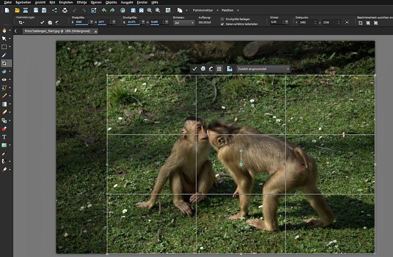 Fotobearbeitung Bild beschneiden