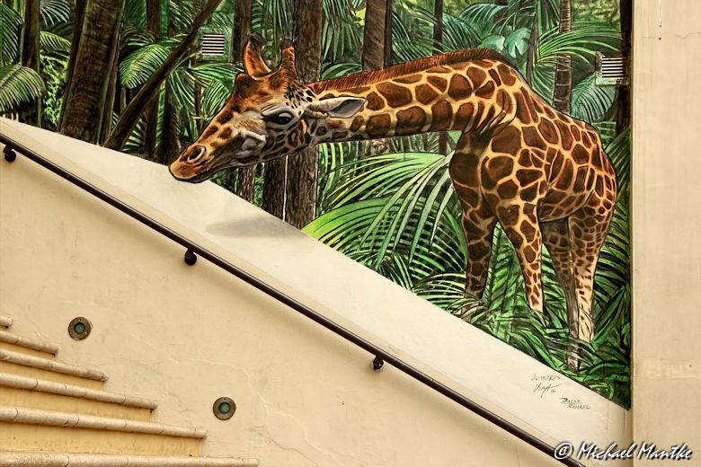 marina dubai walk giraffe