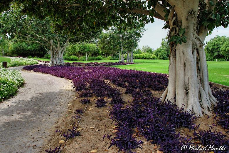Creekside Park Dubai
