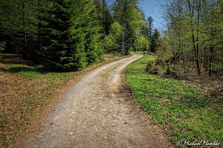 Panoramaweg St. Märgen - Wanderweg