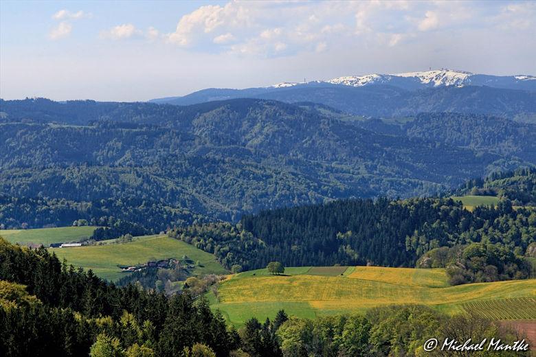 Panoramaweg St. Märgen - Blick auf den Feldberg im Schwarzwald