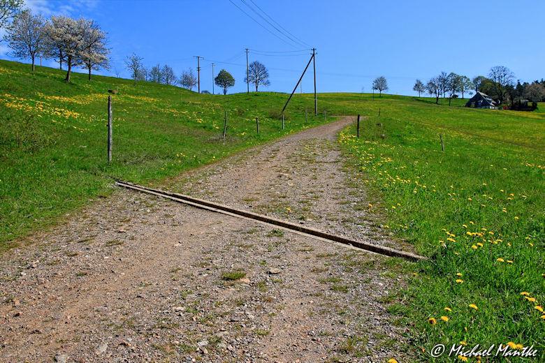 Panoramaweg St. Märgen - Feldweg mit Schlagritze