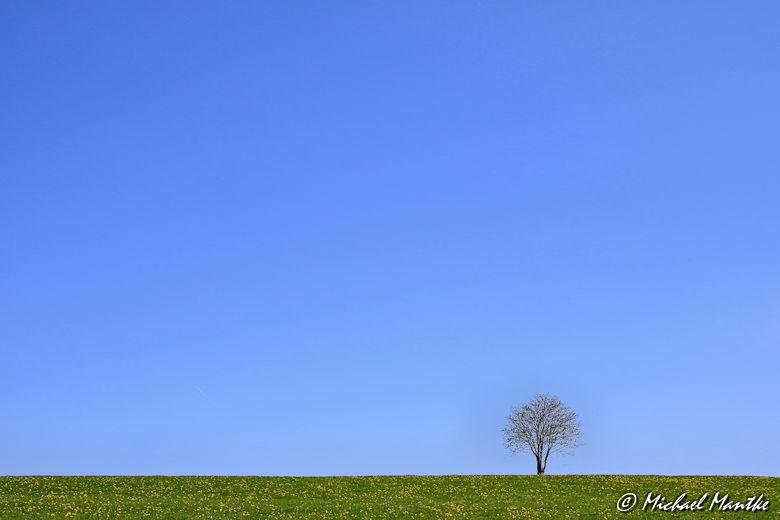 Fotografie-Tipps - sehr tief platzierter Horizont