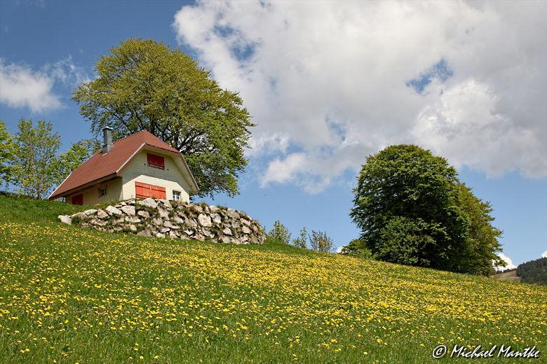 Martin Heidegger Rundwanderweg bei Todtnauberg - Häuschen am Berg