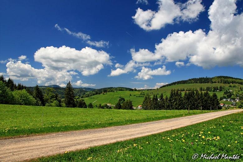 Martin Heidegger Rundwanderweg bei Todtnauberg - Wanderweg Südschwarzwald
