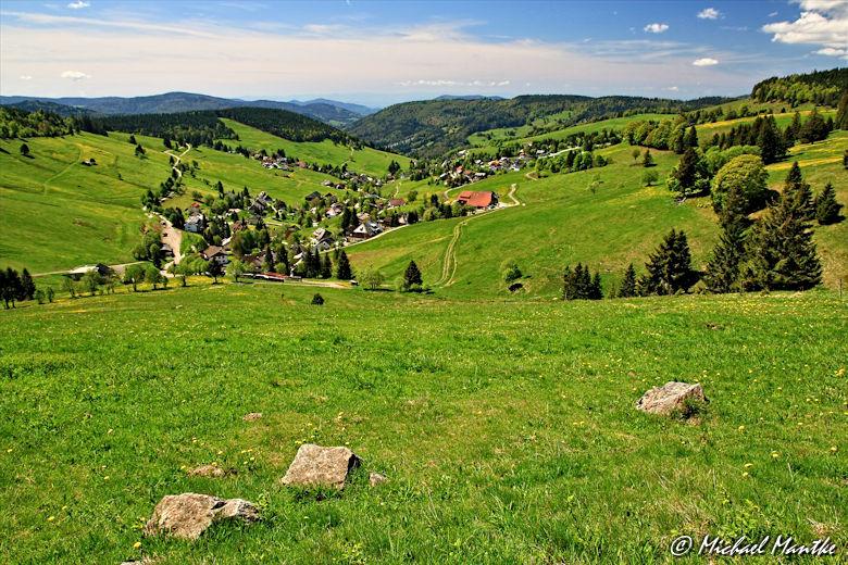 Martin Heidegger Rundwanderweg bei Todtnauberg - Blick ins Tal