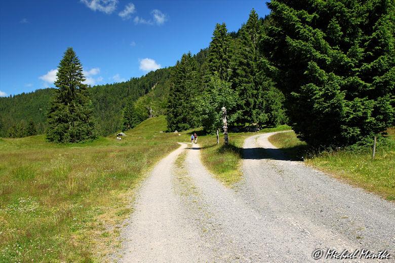 Menzenschwand Geissenpfad Abzweig Wanderweg