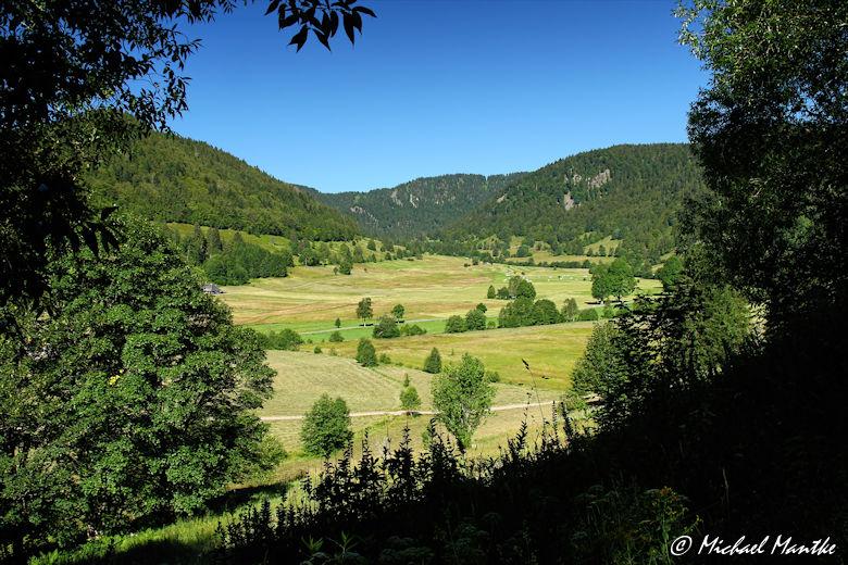 Menzenschwand Geissenpfad Aussicht vom Schwarzberg