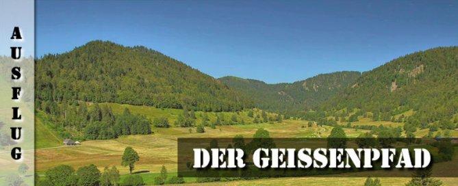Menzenschwand Geissenpfad Schwarzwälder Geniesserpfad