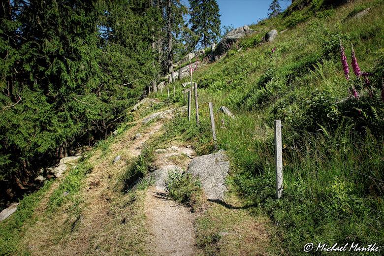 Menzenschwand Geissenpfad Schwarzwälder Geniesserpfad Wanderweg