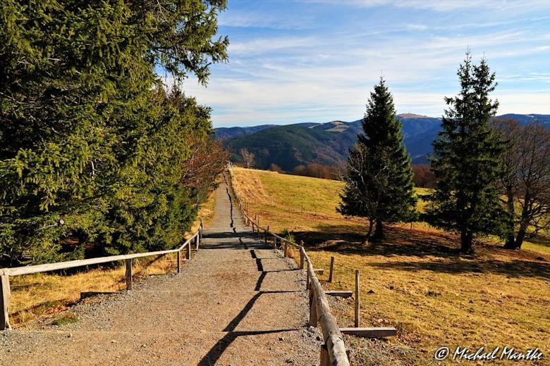 Spazierweg auf dem Schauinsland im Herbst