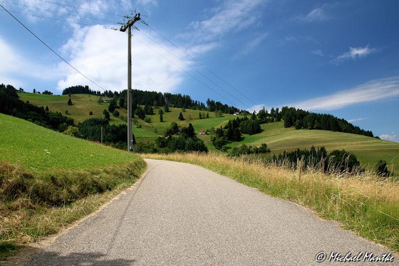 Wanderweg vom Schauinsland nach Horben