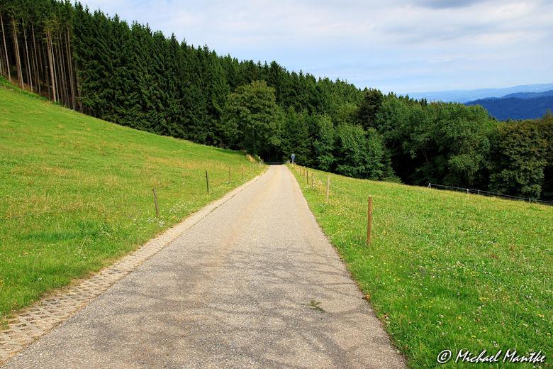 Strasse nach dem Eckhof Richtung Horben