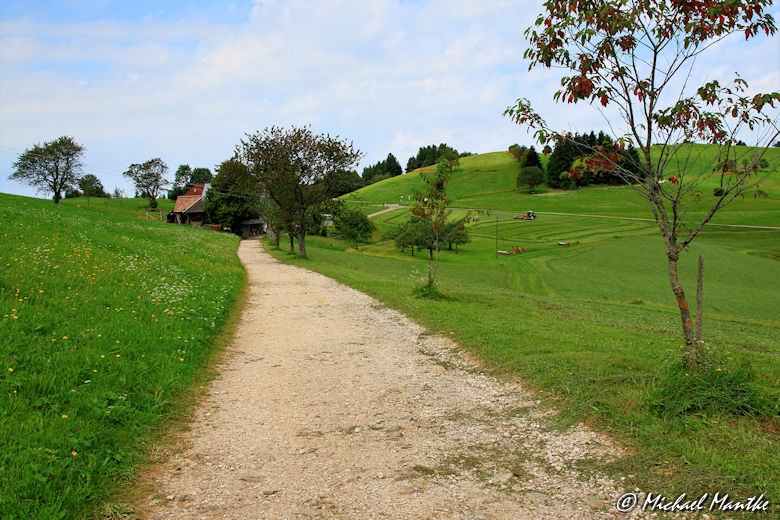 Weg vorbei an Höfen nach Horben