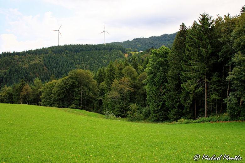 2 Windräder, Wiese und Wald