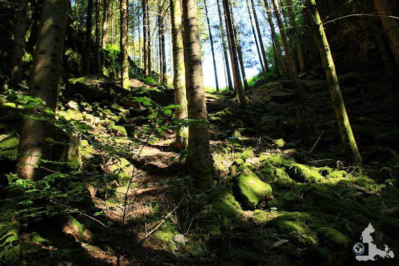 Burgbachwasserfall Wanderung - Aufstieg am Hang zum Burgbachfelsen
