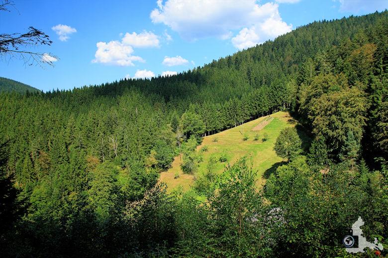 Burgbachwasserfall Wanderung - Aussicht Schwarzwald Landschaft