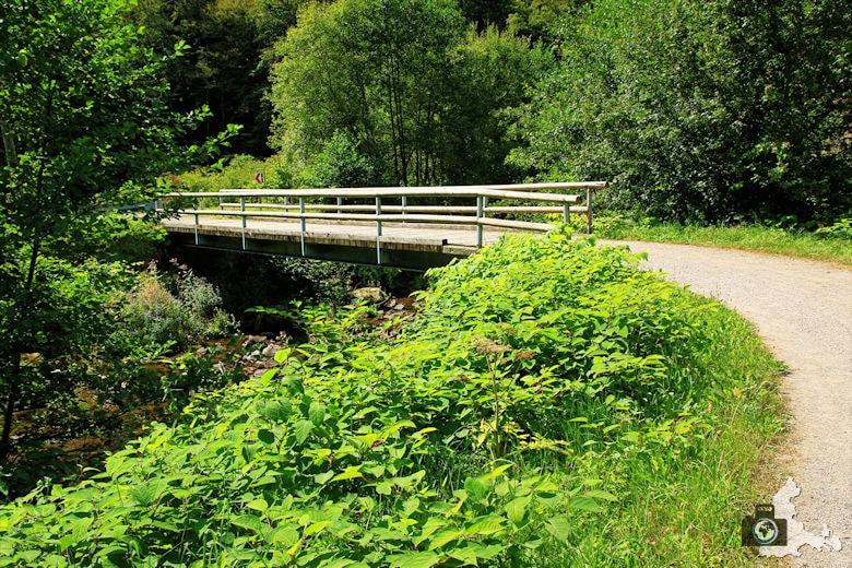 Burgbachwasserfall Wanderung - Urige Brücke über der Wolfach