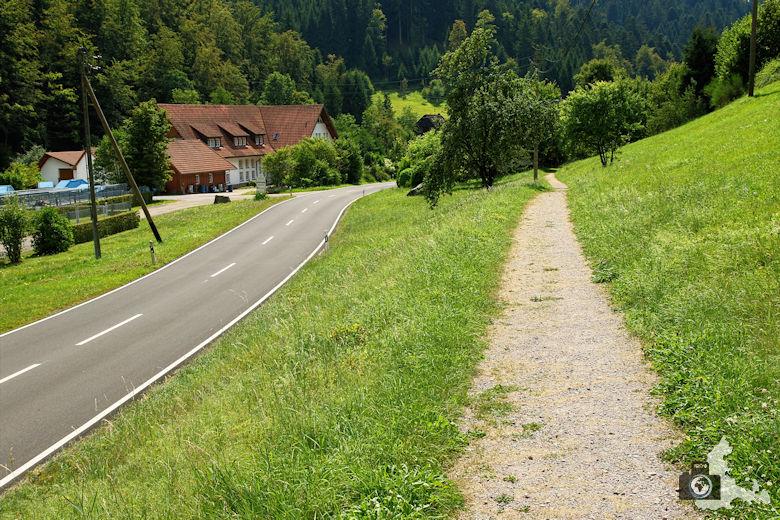 Burgbachwasserfall Wanderung - Weg an Straße