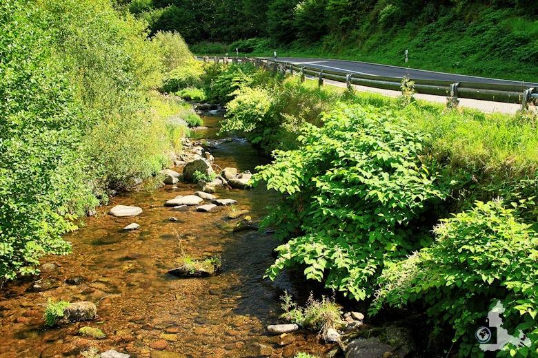 Burgbachwasserfall Wanderung - Wolfach