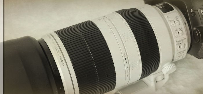 Canon EF 100-400 mm L IS II USM