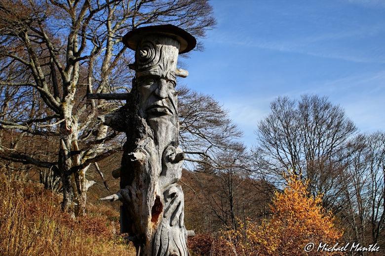 Schauinsland Pfad der Sinne Skulptur aus Holz