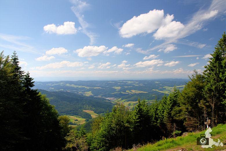 Uhrwaldpfad Rohrhardsberg mit Ausblick auf Rheinebene