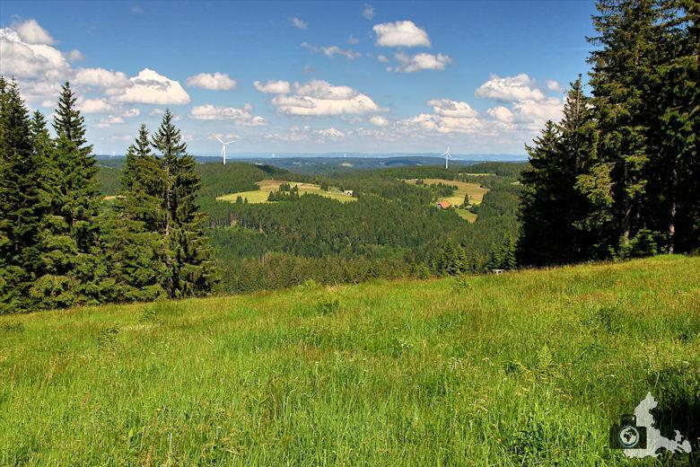 Uhrwaldpfad Rohrhardsberg mit Ausblick auf Nordschwarzwald