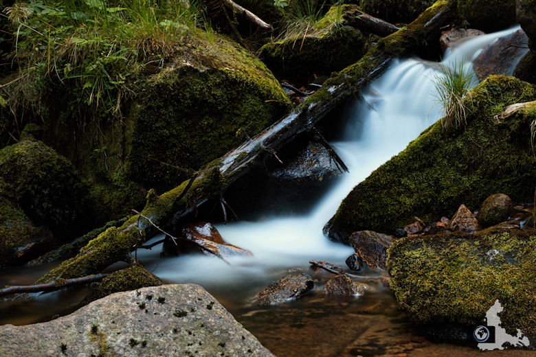 Uhrwaldpfad Rohrhardsberg Elzwasserfälle