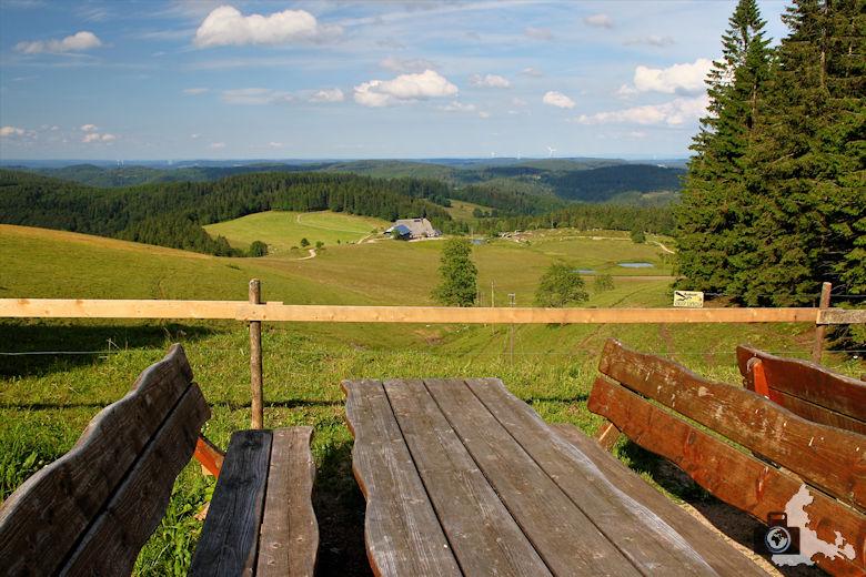 Uhrwaldpfad Rohrhardsberg Schwarzwald Ausblick von der Schwedenschanze
