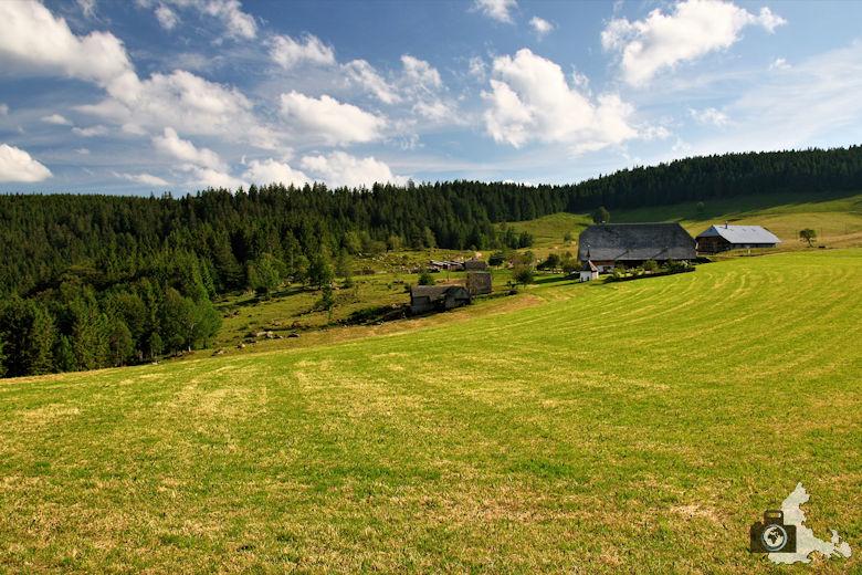 Uhrwaldpfad Rohrhardsberg Schwarzwaldhöfe