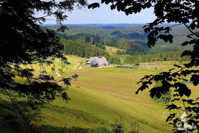 Uhrwaldpfad Rohrhardsberg Schwarzwaldhof