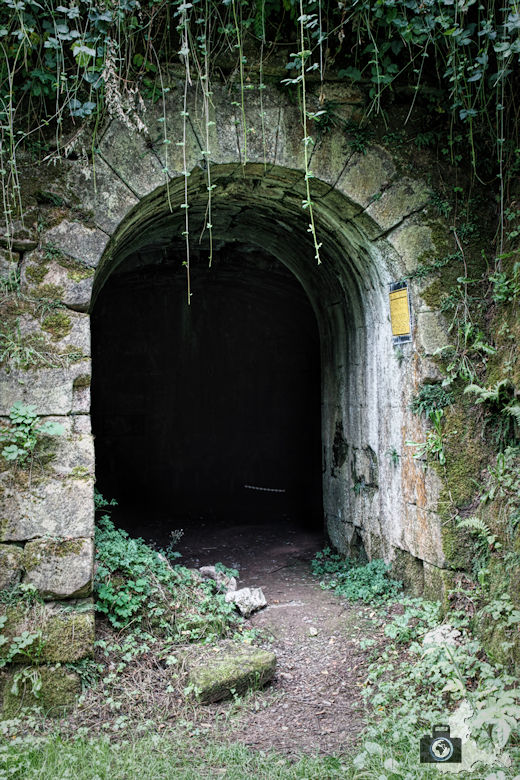 hochburg-ruine-eingang-bastion